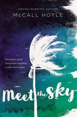 meet the sky