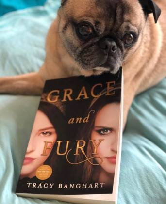 mack grace and fury